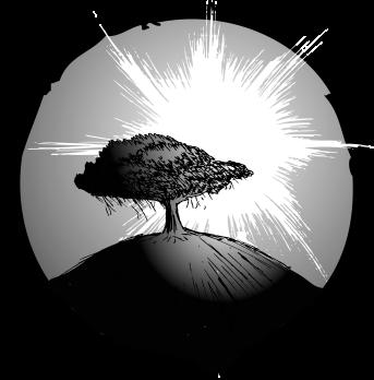 Sun by Tree